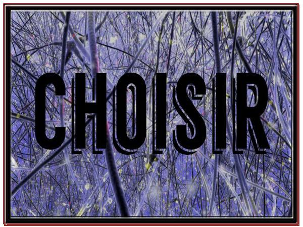 Fanfic: Choisir