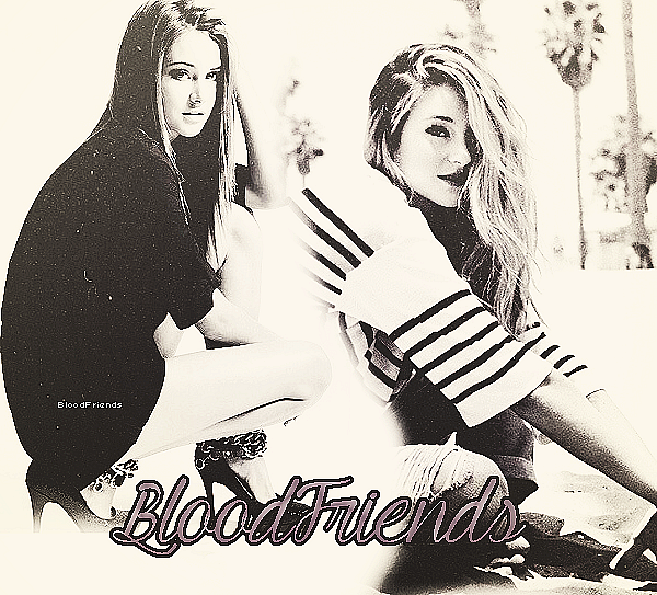 BloodFriends