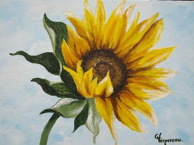 Tournesol mes dessins et mes tableaux - Dessin de tournesol ...