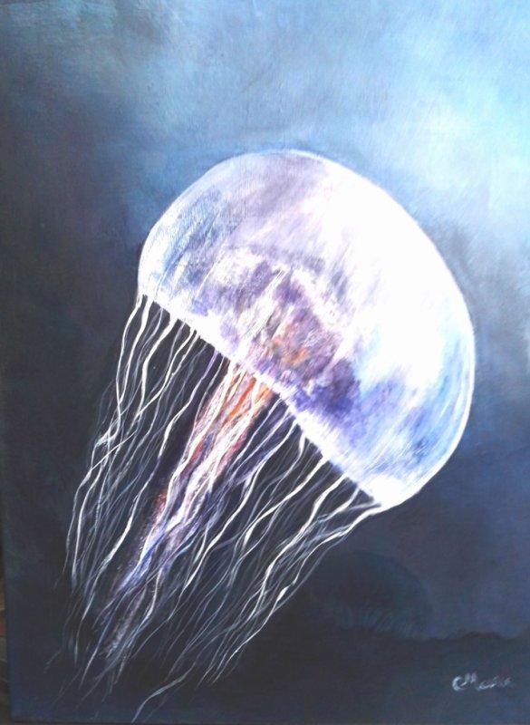 méduse