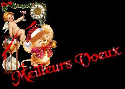 La Mifa vous souhaite bonne et heureuse année 2011 , Moins de Zamous et aussi Plein de Boucan sur Baby