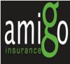 goamigoinsurance