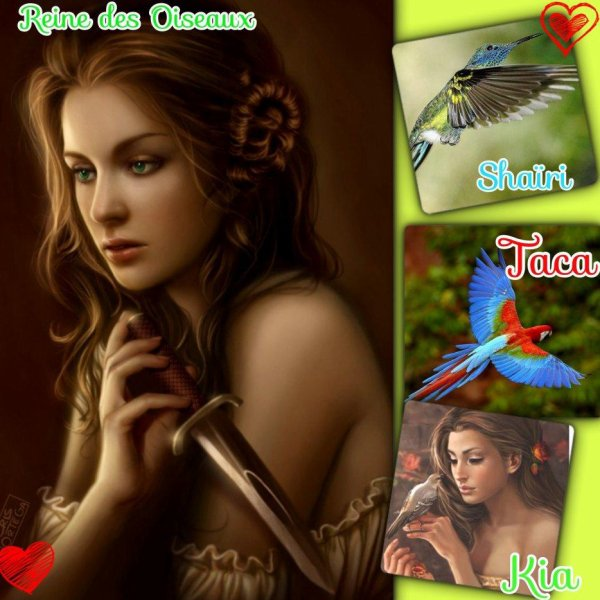 Kia, Reine des Oiseaux  ( The Queen of Birds )