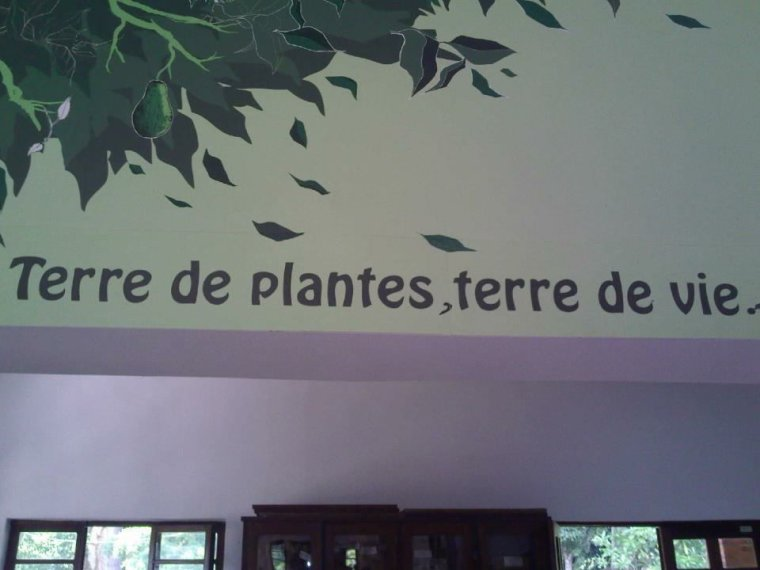 Terre de plantes, terre de vie !