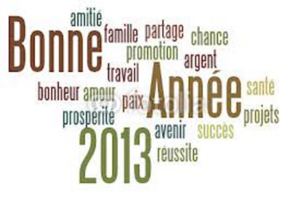 2013...  UNE   NOUVELLE   ANNEE...