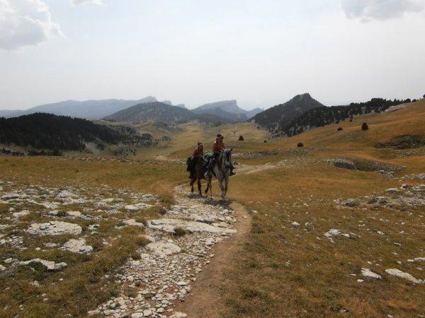 L'air du paradis est celui qui souffle entre les oreilles d'un cheval ♥