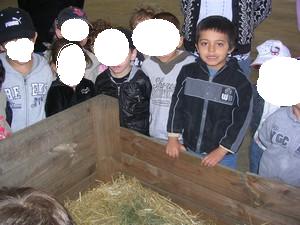 mon Fils Luca en sorti de classe 2011  visité une ferme en Meurthe eet Moselle