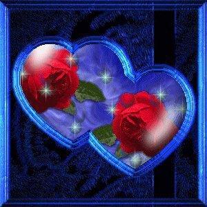 les roses amoureuses de l'alliance