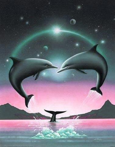 une image de dauphin