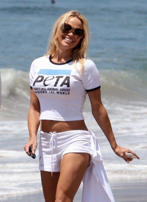 Pamela Anderson au secours des animaux   Touchée par la détresse animale