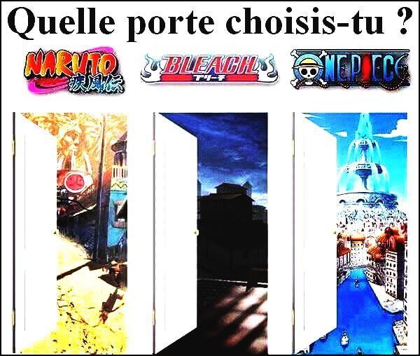 Quelle porte choisiriez-vous?