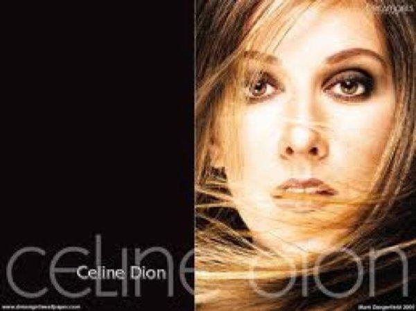 Céline Dion. Le berceau familial de la chanteuse, c'est Tourouvre, dans le Perche !!!