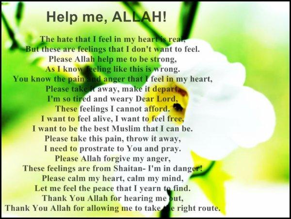 Allahu Akbar <3
