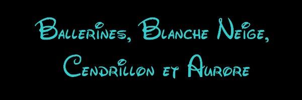 Ballerines ( BN, Cendrillon et Aurore )