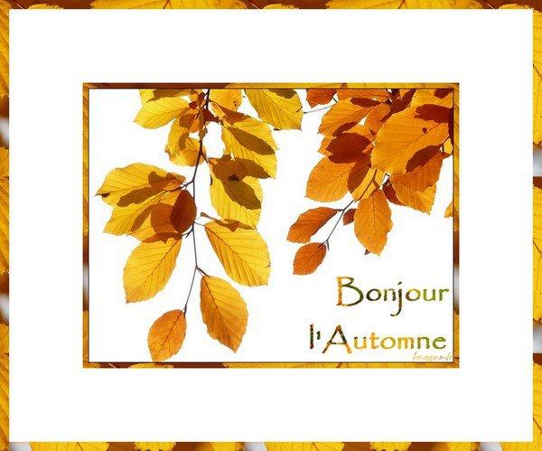 bon automne a tous....