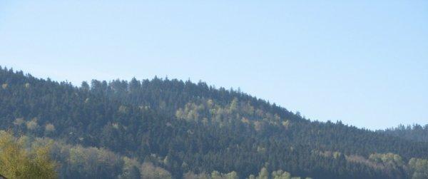 Petite photo de mes Vosges natales