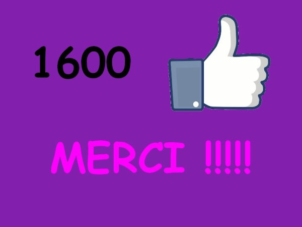 1600 likes atteints sur ma page artiste Facebook !!!!!