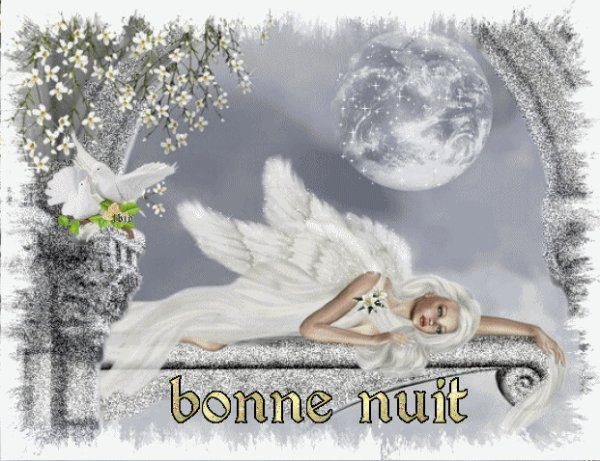 Votre Petit Ange Vous Souhaite Une Douce Nuit Et Vous Envoie