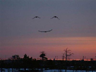 Smile It's a sunnàh :) !