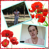 2 photos coquelicot
