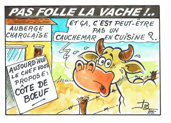 PAS FOLLE LA VACHE 578