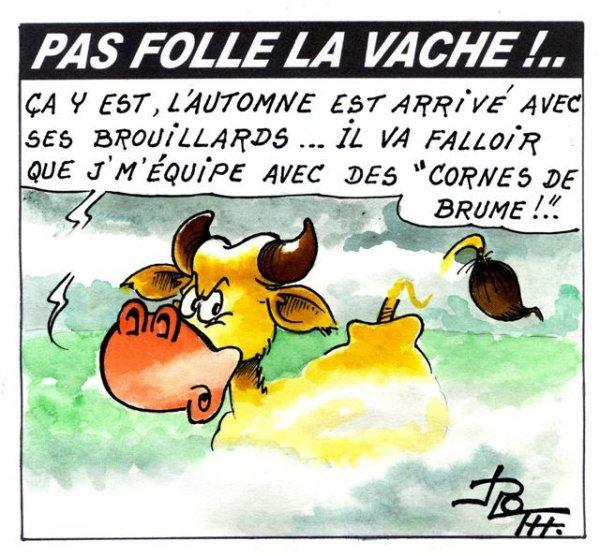 PAS FOLLE LA VACHE 586