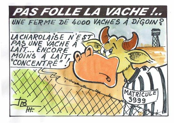PAS FOLLE LA VACHE 587