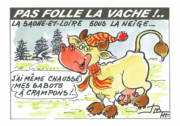 PAS FOLLE LA VACHE 589