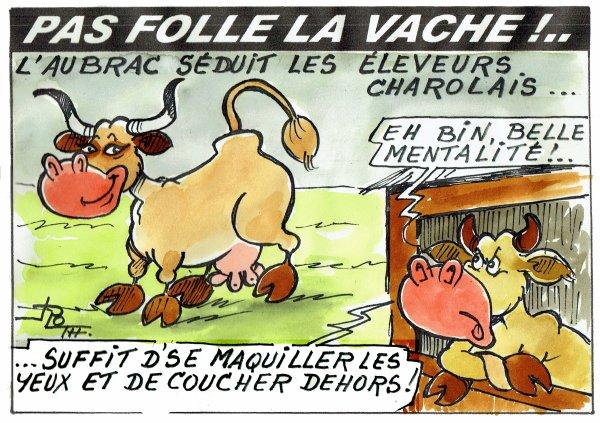 PAS FOLLE LA VACHE 592