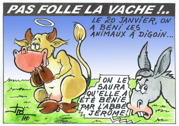 PAS FOLLE LA VACHE 594