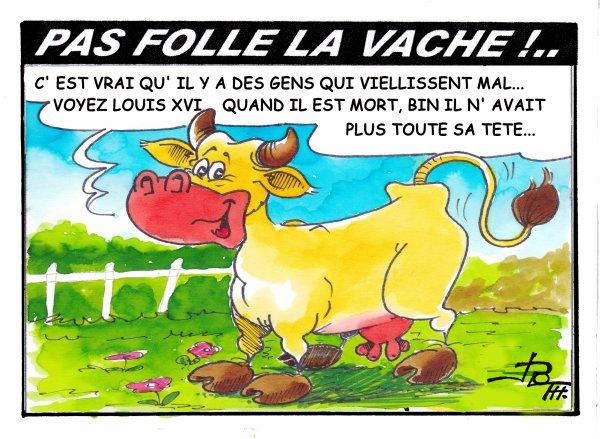 PAS FOLLE LA VACHE 596
