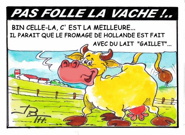 PAS FOLLE LA VACHE 597