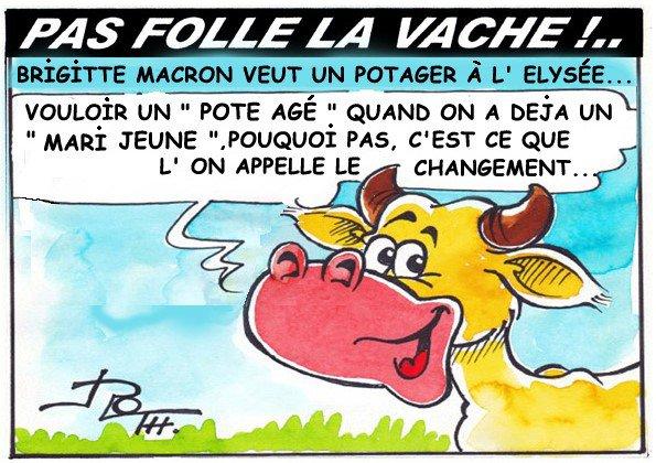 PAS FOLLE LA VACHE 598