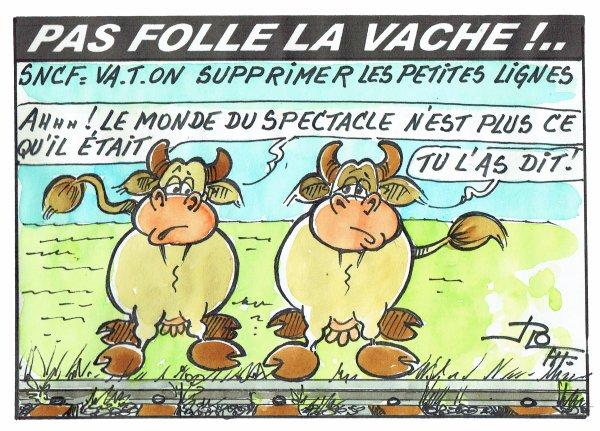 PAS FOLLE LA VACHE 599