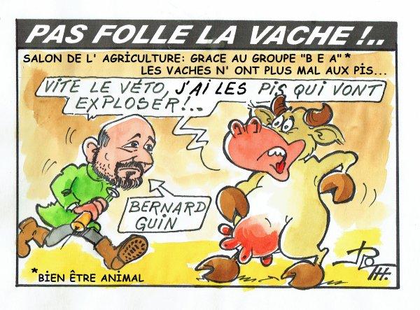 PAS FOLLE LA VACHE 600