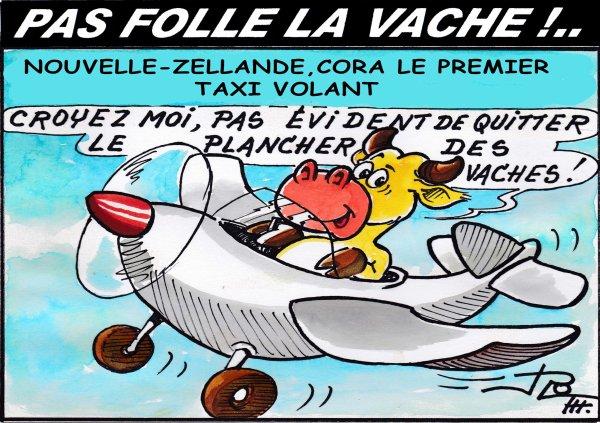 PAS FOLLE LA VACHE 602