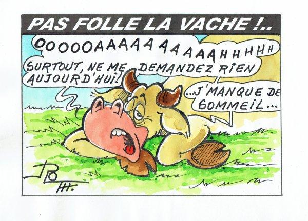 PAS FOLLE LA VACHE 603