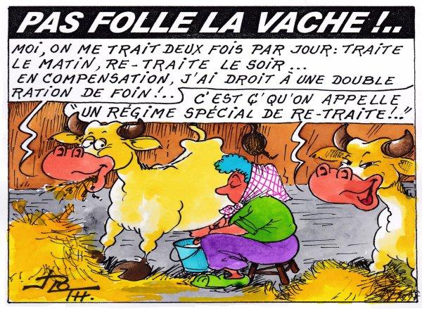 PAS FOLLE LA VACHE 605