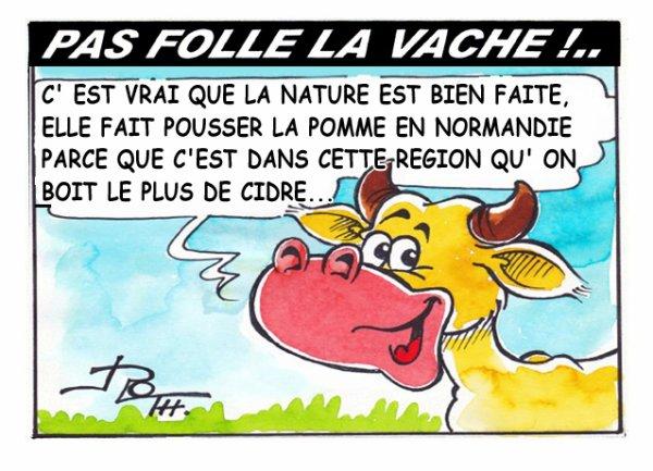 PAS FOLLE LA VACHE 607