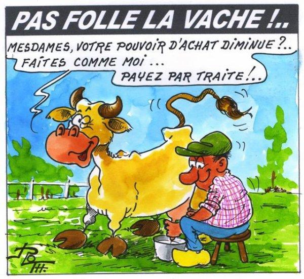 PAS FOLLE LA VACHE 612