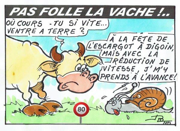 PAS FOLLE LA VACHE 616