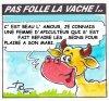 PAS FOLLE LA VACHE 617
