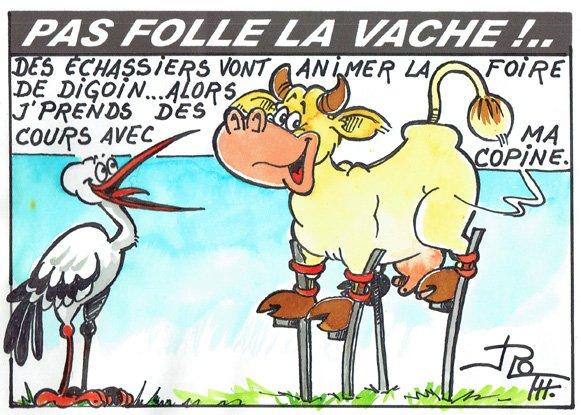 PAS FOLLE LA VACHE 623