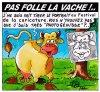 PAS FOLLE LA VACHE 627