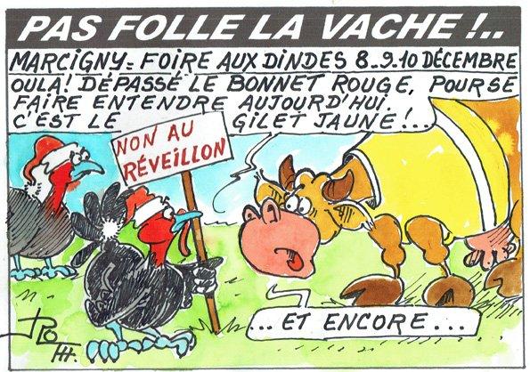PAS FOLLE LA VACHE 637