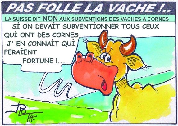 PAS FOLLE LA VACHE 638
