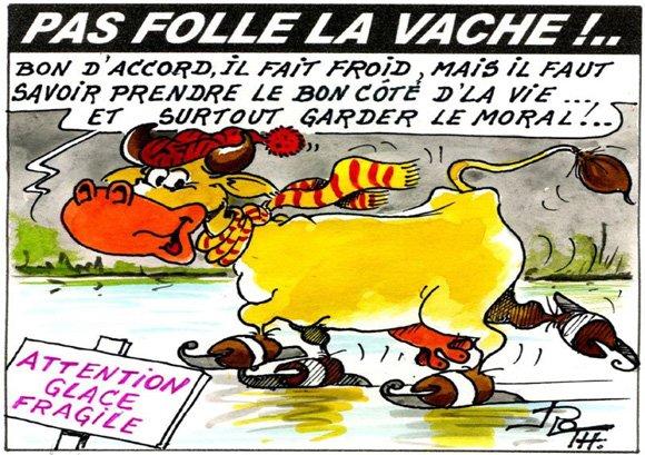PAS FOLLE LA VACHE 644