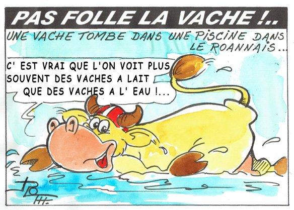 PAS FOLLE LA VACHE 646