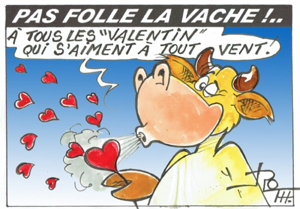 PAS FOLLE LA VACHE 647