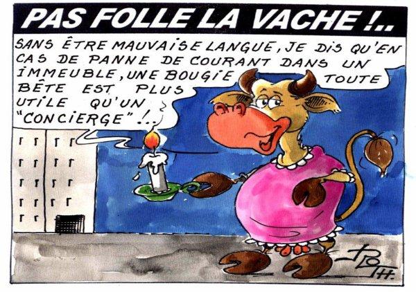 PAS FOLLE LA VACHE 651